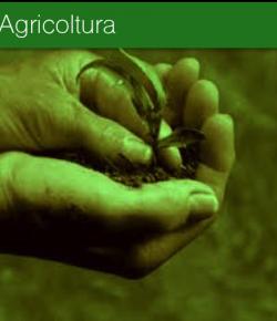 Consulenza e formazione per il futuro delle imprese agricole